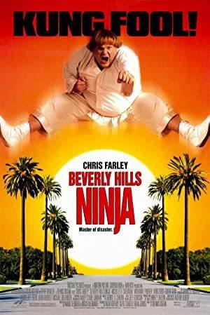 Beverly Hills Ninja online sa prevodom