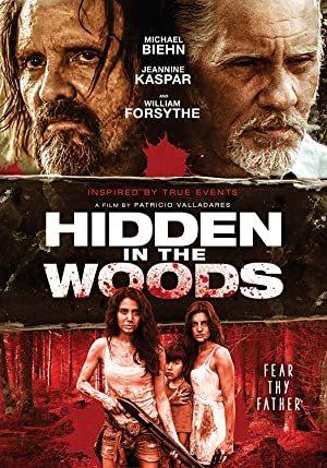 Hidden in the Woods online sa prevodom