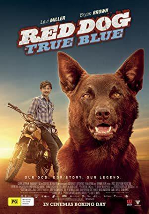 Red Dog: True Blue online sa prevodom