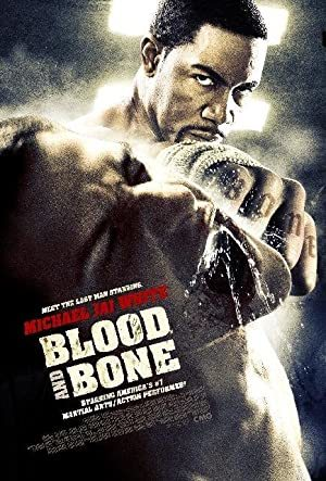 Blood and Bone online sa prevodom