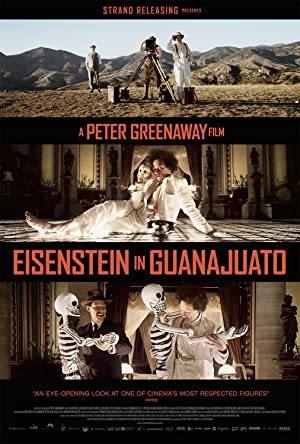 Eisenstein in Guanajuato online sa prevodom