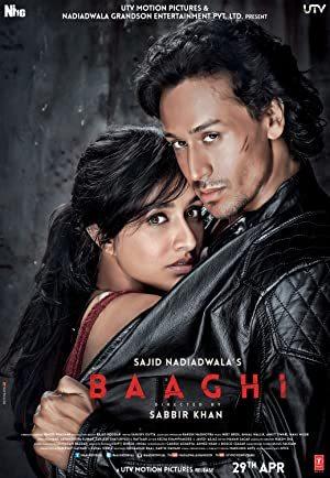 Baaghi online sa prevodom