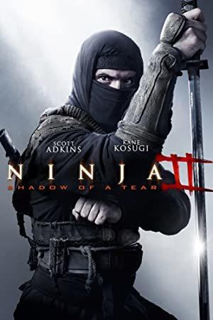 Ninja: Shadow of a Tear online sa prevodom