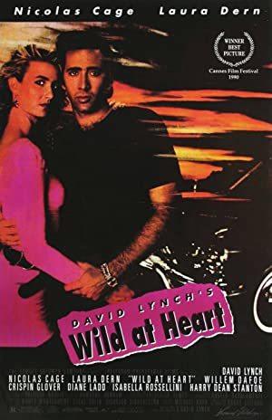 Wild at Heart online sa prevodom